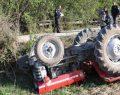 Ağaç çekerken traktör devrildi