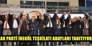 AK Parti'de aday adayları tanıtılıcak