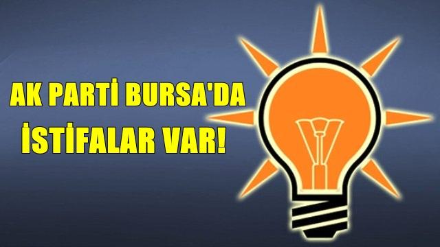 AK Parti Bursa'da İstifalar