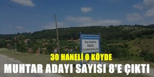 32 Haneli Köyde Aday Sayısı 8'e Çıktı