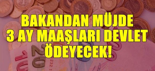 Bakan Selçuk'tan özel sektöre müjdeli haber