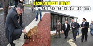 Başkan Taban Hayvan Barınağını Ziyaret Etti