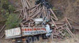 İnegöllü kamyoncu hayatını kaybetti !